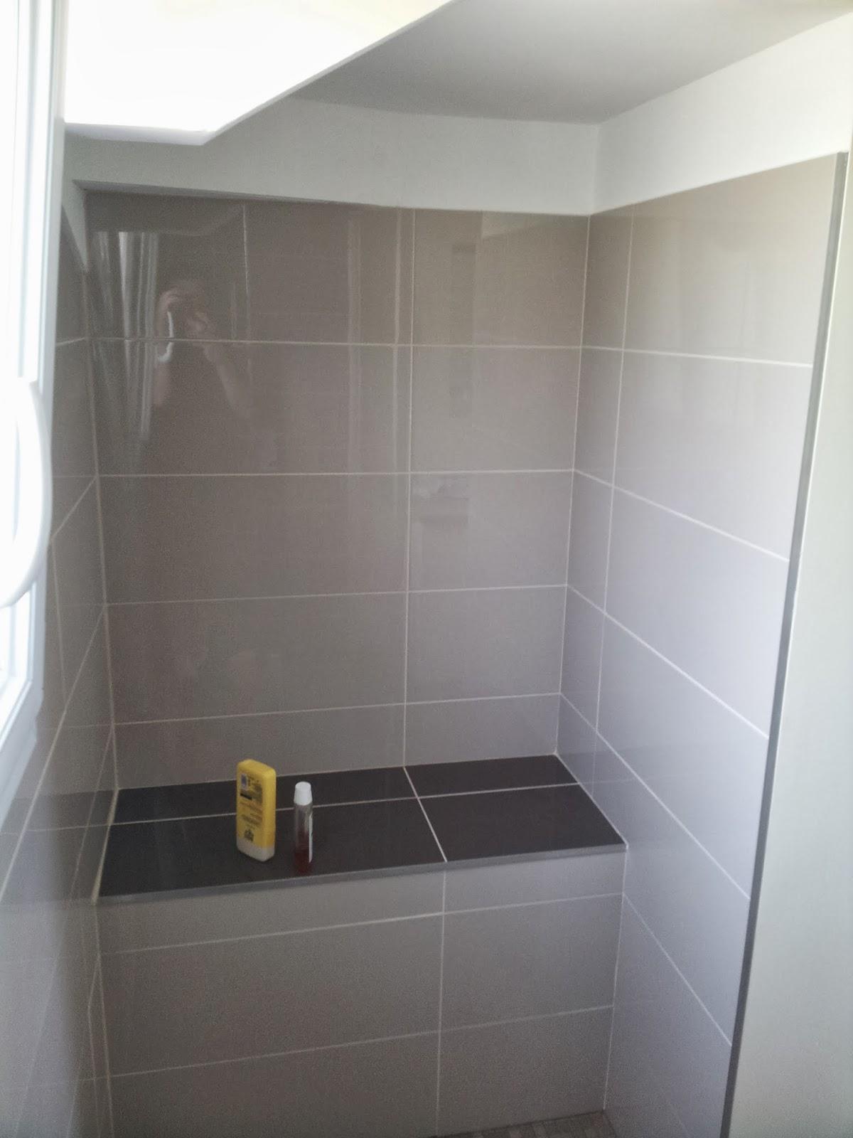 Michel le coz agencement d coration salle d 39 eau marron for Salle d exposition salle de bain