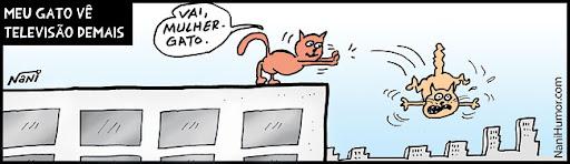 Meu gato vê televisão demais... Mulher-gato. tiras