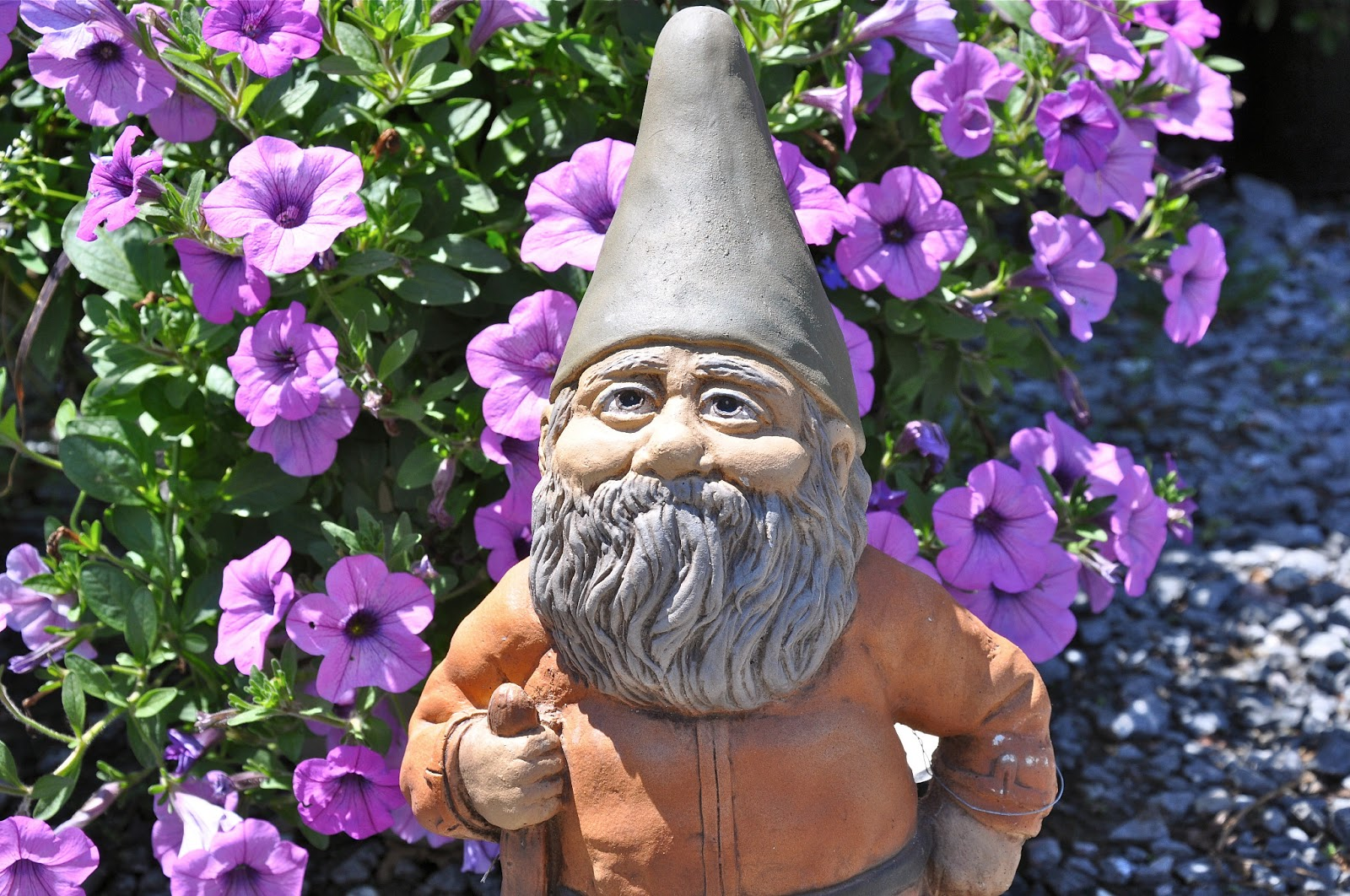 A Traditional No Gnomes Will Be Welcomed This Year At Chelsea