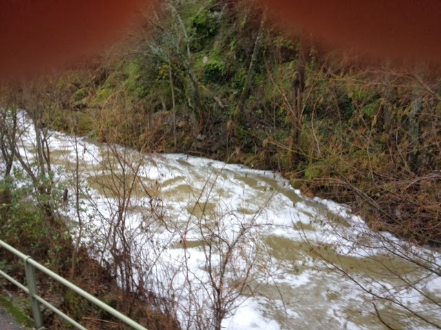 Imagen del rio en alguno de los tramos la espuma llego a alcanzar el medio metro de espesor