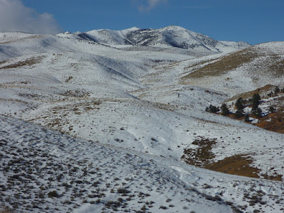 Peavine Peak surrounded by a wavy topography of hills, ridges and canyons