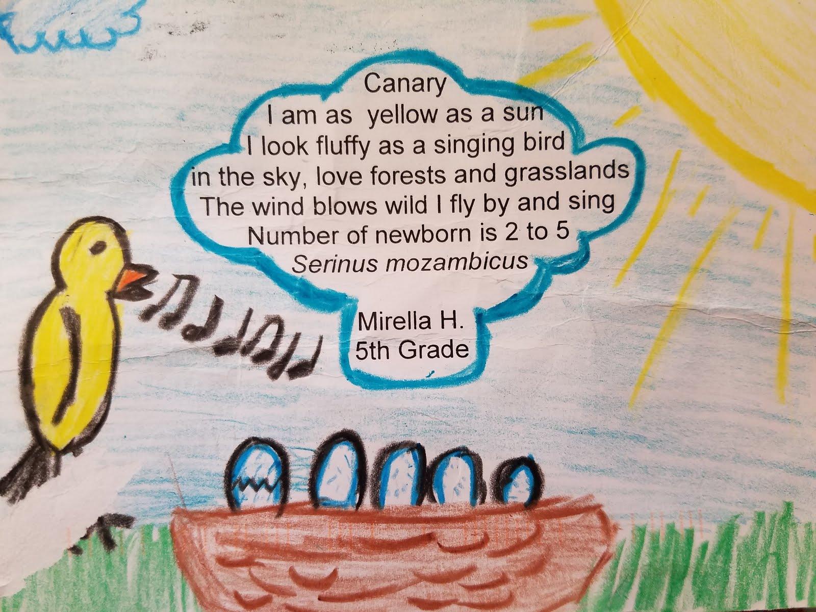 A Beautiful Poetry Postcard!
