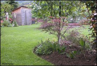 Un giardino di perenni in ticino alcune panoramiche for Aiuole perenni