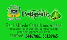 René Alfredo Castellanos Aldana