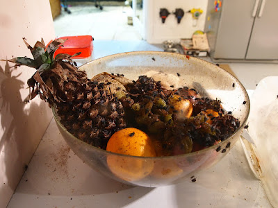 Bowl of rotting fruit
