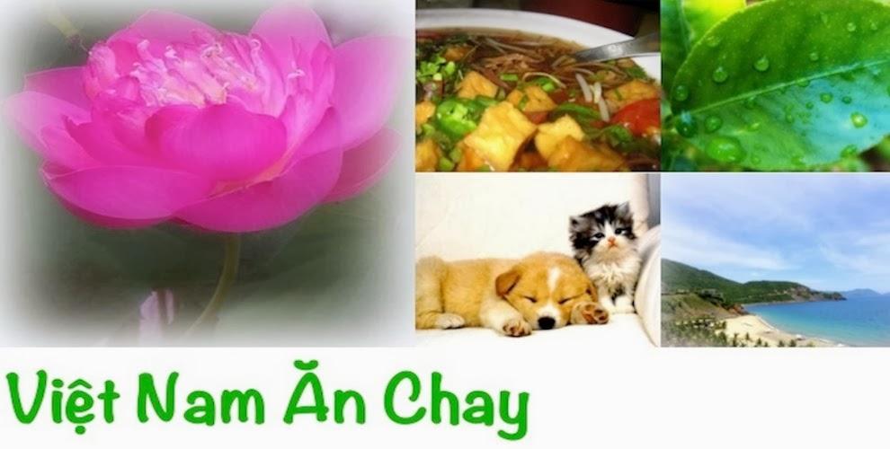 Vegan Vietnam