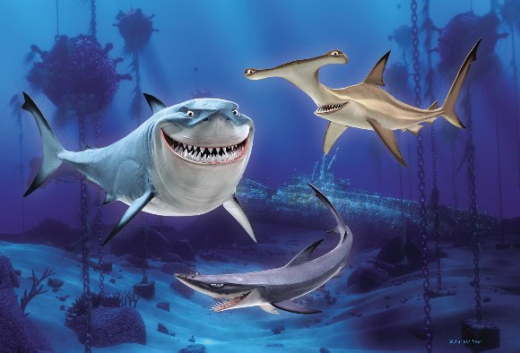 Three different kinds of sharks in Finding Nemo