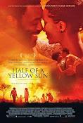Medio sol amarillo (2013)