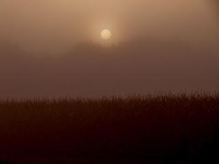 """<img src=""""zon-opkomst-1.jpg"""" alt=""""Zonsopkomst-mist-nederland"""">"""