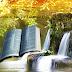 Homilia do 26º Domingo do Tempo Comum - Dia da Bíblia