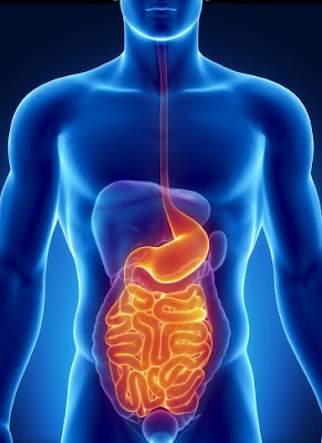 How to clean the intestines naturally