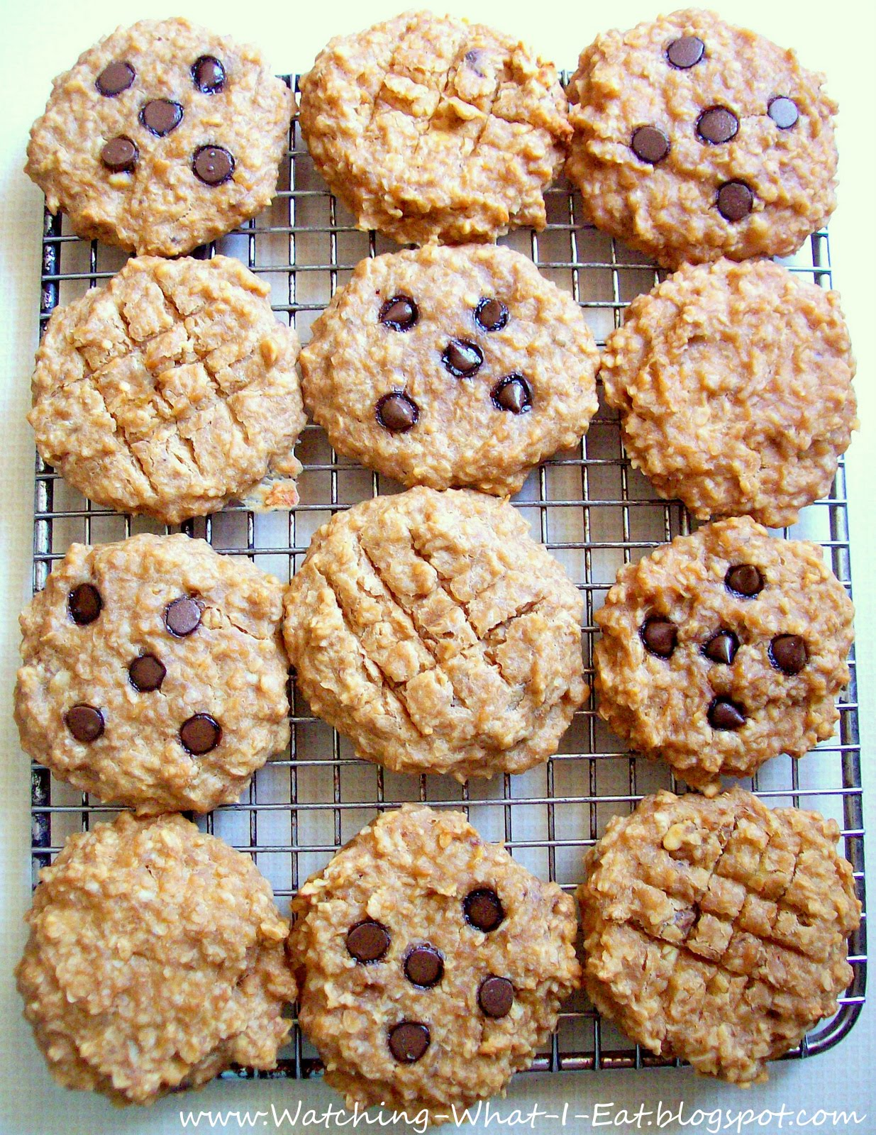 Oatmeal cookies recipes without flour
