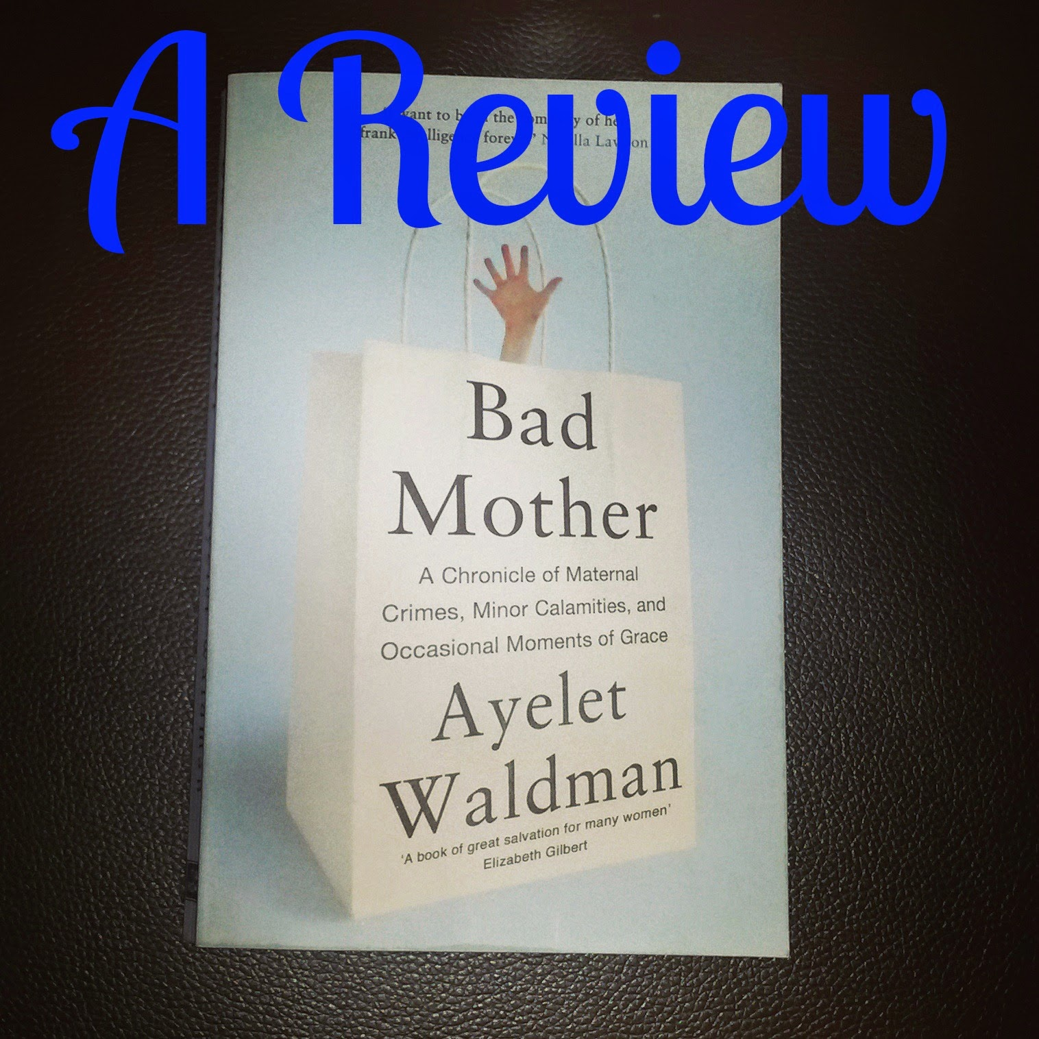 Bad Mother Ayelet Waldman Review