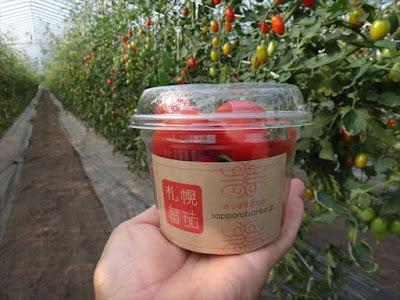 札幌蕃茄のオリジナルカップ
