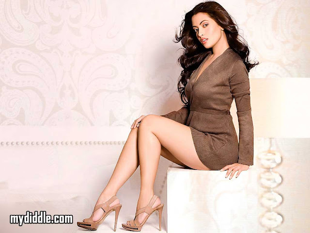 Riya Sen 2011 Hot Wallpaper