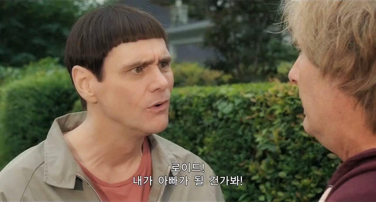 Dumb And Dumber To (2014) S3 s Dumb And Dumber To (2014)