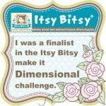 Dimensional Challenge Finalist