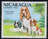 1988年ニカラグア共和国 コッカー・スパニエルの切手