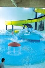 Mon Jardin D Humeurs Centre Aquatique De Bois Colombes
