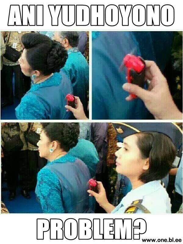 Ibu Ani SBY, Problem?