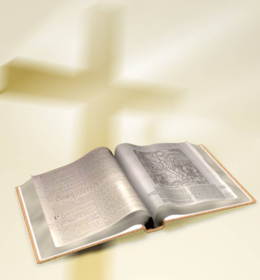 Bibles: Why The Bible Is Not All True: Why The Holy Bible Is Not