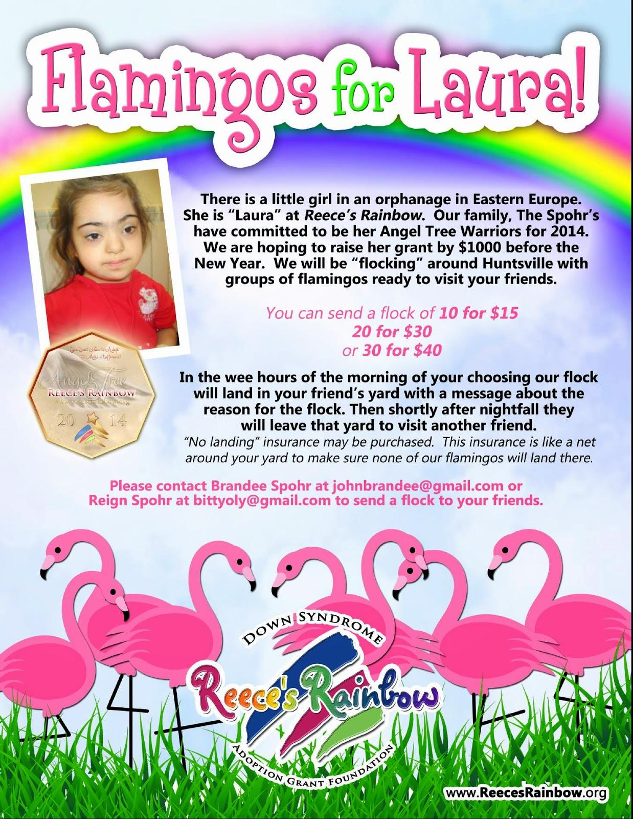 Flamingos for Laura
