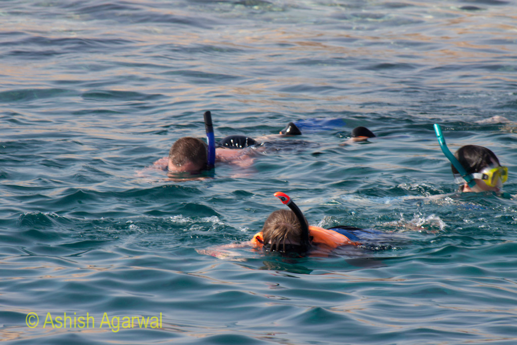 People with snorkeling gear in the Red Sea