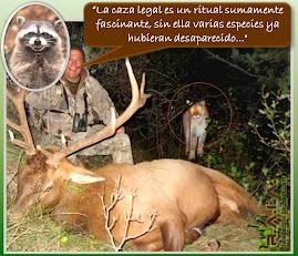 SI AMAS LA CAZA NO PUEDES AUTONOMBRARTE PROTECTORA DE ANIMALES!!! !