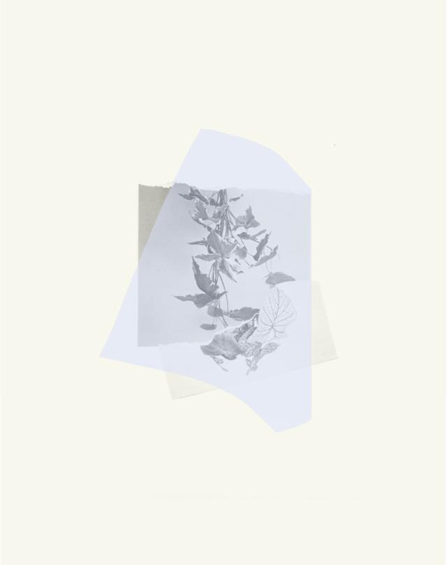 decoupage rosemarie auberson
