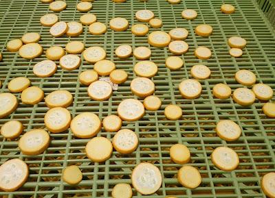 ズッキーニ乾燥中
