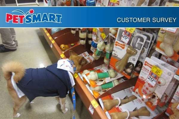 www.Petsmartfeedback.com, Petsmart feedback survey, petsmart feedback validation code