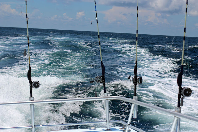 Grab a pole and catch some fish!! Pensacola Beach, FL Deep Sea Fishing Charter~ The Entertainer