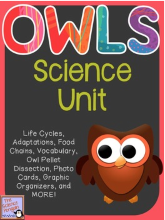 Classroom Owl Ideas ~ Owls science unit yeah — the penguin