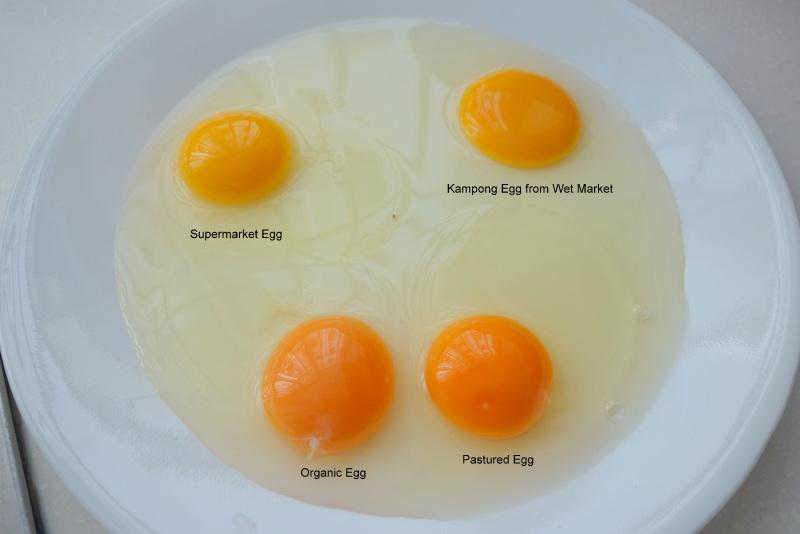 Organic And Pastured Eggs