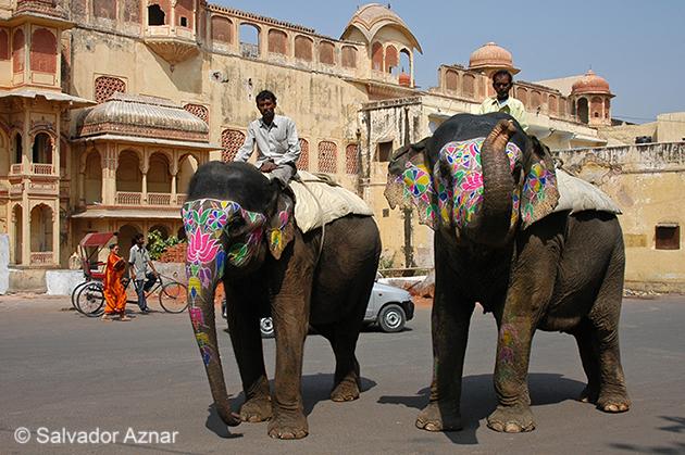 http://www.diariosdeunfotografodeviajes.com/2014/12/que-ver-y-visitar-en-jaipur.html
