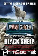 Cừu Ăn Thịt Người Black Sheep