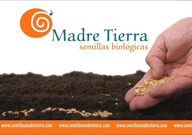 Semillas biólogicas llenas de vitaminas, antioxidantes y minerales