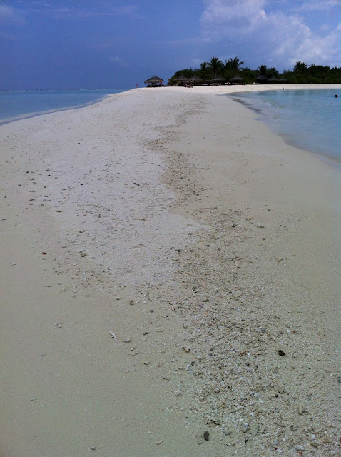 lingua_sabbia_maldive