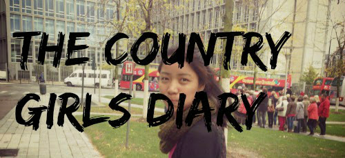 The Country Girl's Diary...