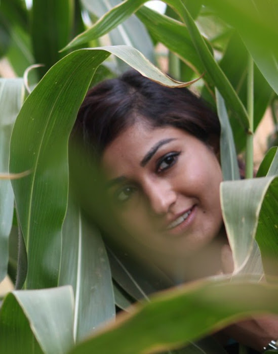 madhavi latha from usuru movie, madhavi latha new actress pics