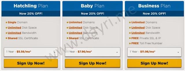 shared web hosting plans