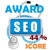 samsury seo score 44%
