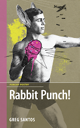 Rabbit Punch! by Greg Santos (DC Books, 2014)