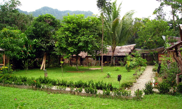 Ada Surga Di Tangkahan Sumatera Utara