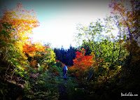 autumn olympic hike