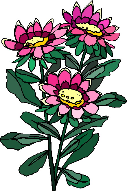 clipart of plants - photo #36