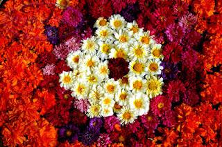 toko bunga di jakarta, jual bunga, rangakain bunga segar