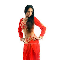 Majestic Lakshmi chandrika photos