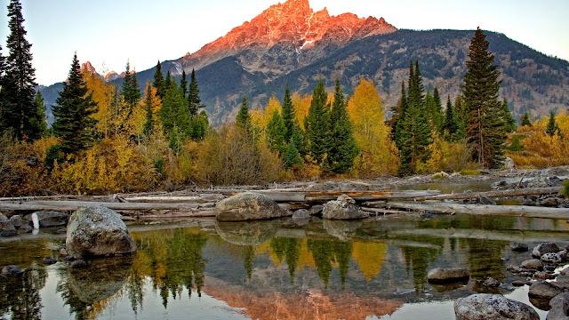 Fondos Parque nacional de Grand Teton