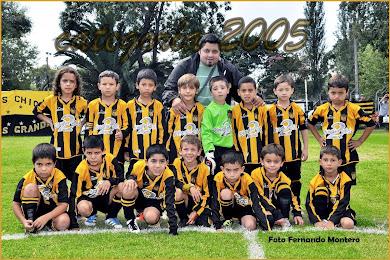 CATEGORIA 2005